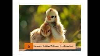 Variety of Computer Desktop Wallpaper Free Download