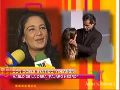 yolanda Andrade Le ventanearon un proyecto para TV
