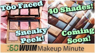 Too Faced Natural Face Palette + CoverFX Modern Matte Finish Foundation! | Makeup Minute