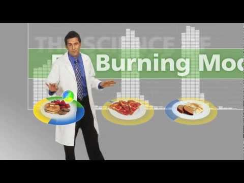 The Food Lovers Fat Loss System - Explained