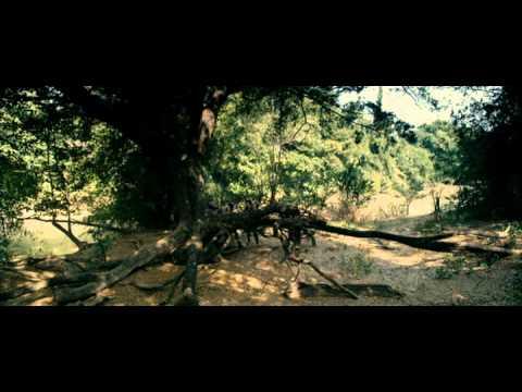 Ключ Саламандры. 2011.avi