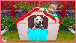 강아지 국민이가 노래해요 인기 동요 빙고 Dog and baby Bingo song Kids Nursery Rhymes Songs   말이야와아이들 MariAndKids