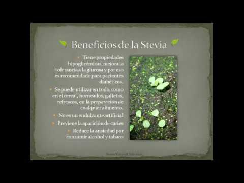 Los beneficios de la stevia - YouTube