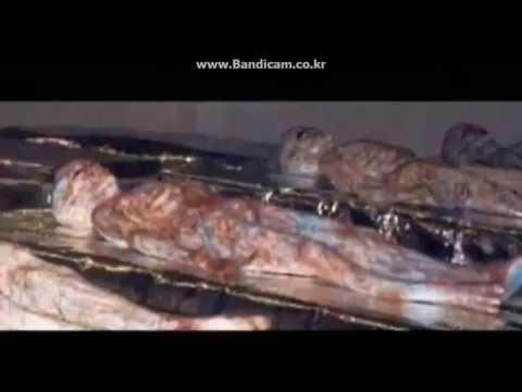 UFO 추락영상과 외계인 사체들. alien body