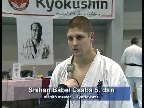 Global Kyokushin 1. International Open Seminar - Dabas, Hungary, Europe. Image 1