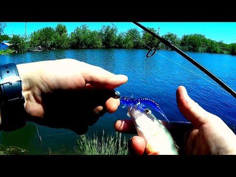 ловля судака на дроп шот видео ютуб