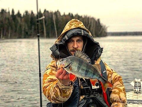 Рыбалка в Ноябре.Отличный Клёв Крупного Окуня!!! Двое Суток на Десногорском водохранилище.