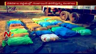 Police Caught Red-Handed Ganja Smuggling Lorry in Vijayawada || NTV