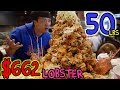 $662 MONSTER Lobster MOUNTAIN: 50 Pounds!!!
