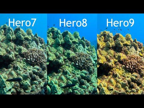 GoPro Hero9 Hero8 Hero7 Underwater Auto White Balance Comparison - GoPro Tip #681 | MicBergsma