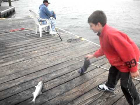 Point lookout ny high tide blue fishing with joey for Point lookout fishing report