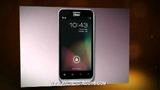 Rooting Zte N880E full instructions - ZTE N880E