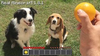 Real Life Minecraft - CUTE PUPPIES & ROCCAT NYTH MOUSE