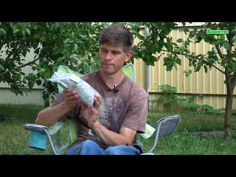 Обзор калийных удобрений. Как и когда их применять?