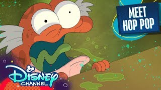 Meet Hop Pop! | Amphibia | Disney Channel