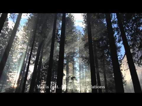 MitiS feat. Adara - Foundations