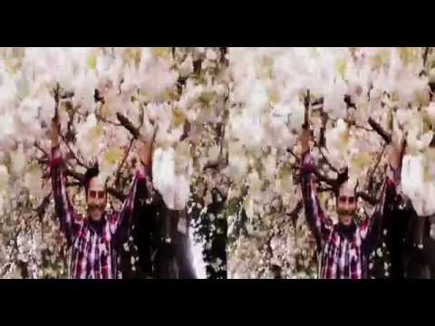 Snowing Japanese Cherry Trees in 3D