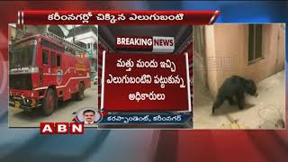Forest Department Team Grabbed The Bear In Karimnagar