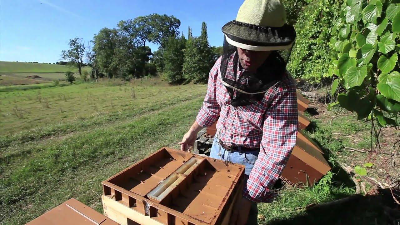 7 8 nourrir et soigner une ruche youtube. Black Bedroom Furniture Sets. Home Design Ideas
