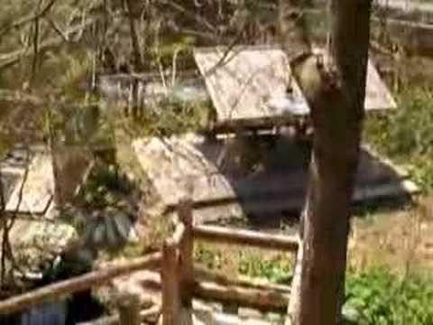 混浴温泉・温川山荘・konyokuonsen.nurukawasansou