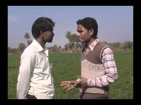 Improved Method of Coriander Cultivation Hindi Access Madhyapradesh