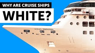 Why Cruise Ships Are White