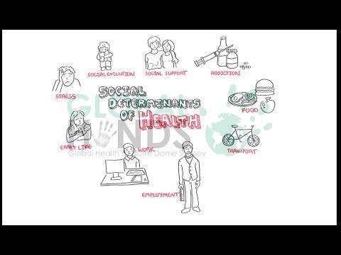 Global Hands - Social Determinants of Health