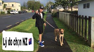 Vlog #8 Lý do nên chọn New Zealand