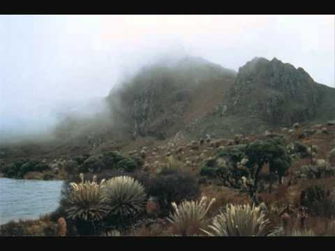 ecosistemas colombianos HD