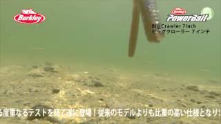 【水中動画】Berkley BigCrawler 7inch