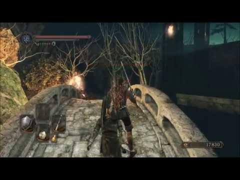 Dark Souls 2 Scholar of the First Sin Durability Bug (framerate)