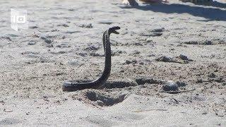 10 Playas más peligrosas del mundo