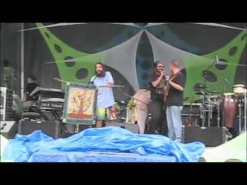 Evolve Fest 2011 Heady Haitian Tree QUilt