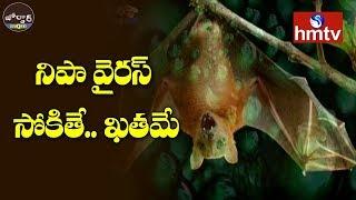 నిపా వైరస్ సోకితే.. ఖతమే | Jordar News  | hmtv