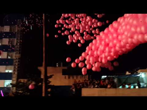 PINK BALLOONS project at HEC concert 140322