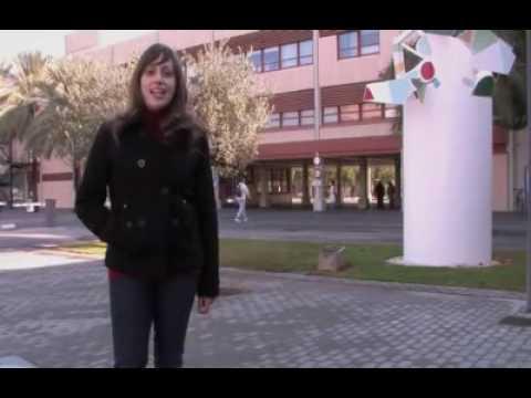 Universidad Politécnica de Valencia. Plan estratégico  (UPV)