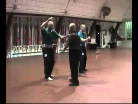 Praying Mantis Kung Fu - Purple Belt Training with Sifu Henry Sue Image 1