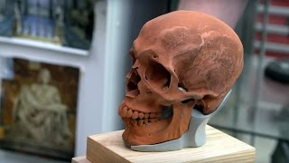 Weta Workshop Artist's Hand-Sculpted Skulls