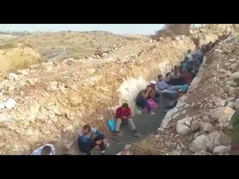 """צפו: כ-120 פלסטינים שב""""חים נתפסו בתעלה כשניסו להסתנן לישראל"""