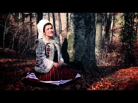 Diana Sarbu - Amintirea cerne