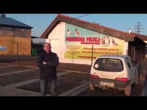 Stacja hodowlana - Ponderosa Polska