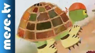 Török Szilvi: Gyors és lassú (rajzfilm gyerekeknek, mese)
