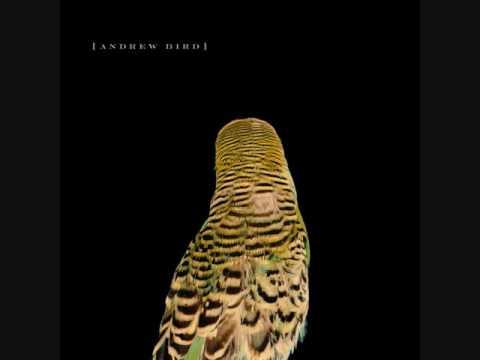 Andrew Bird - Simple X