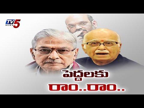 LK Advani, MM Joshi Dropped From BJP parliamentary...