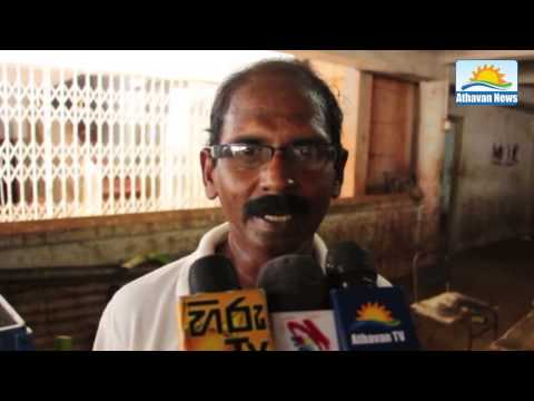 Banana Price has increased in Jaffna