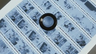 Viewing & Storing Negatives - Film Tip!