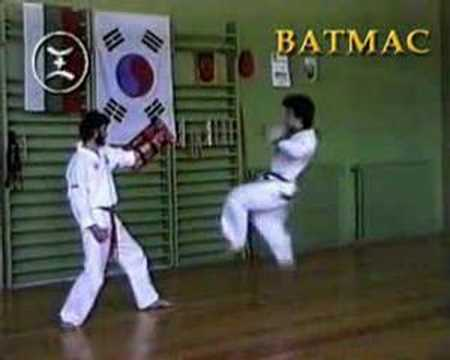 AMAWA / GM Robert Haritonov's Tang Shou Dao / Tang Soo  Do Team / Kick Techniques Image 1
