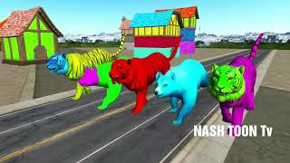 wild animals finger family song for kids | learning colors animals, NASH TOON Tv Nursery Rhymes