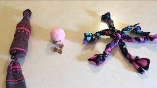 3 DIY Dog Toys Tutorial (Wednesdays with Wizzy)