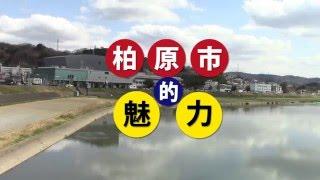中国語圏向け柏原市PV(日本語字幕)